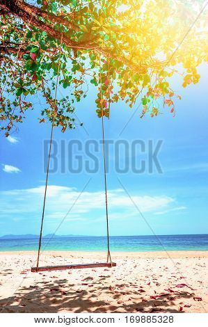 Swing hang from coconut tree over beach. Vacation concept