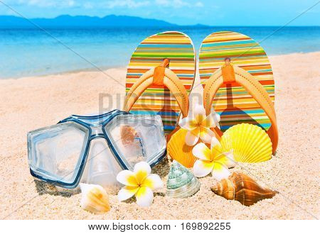 Holidays Background. Seashells and diving mask on the ocean beach
