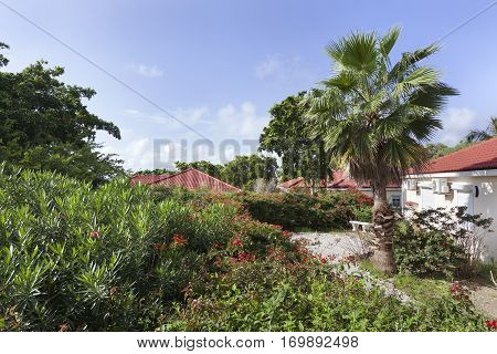 Garden and apartment roofs of a resort on Curacao