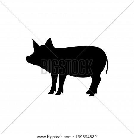 Pork vector design isolated on white background