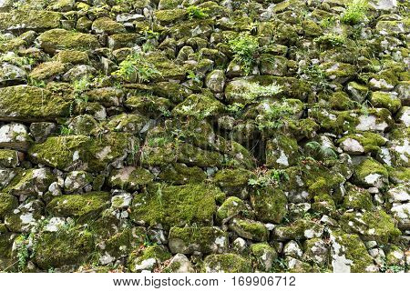 Old stone wall overgrown with moss