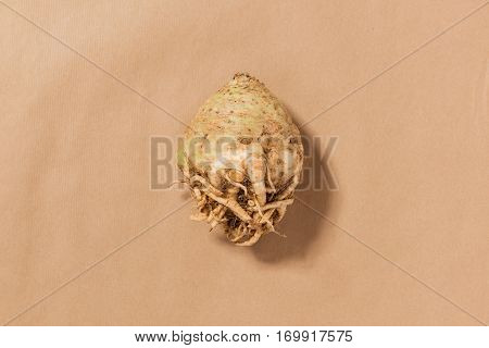 Whole Raw Celeriac On A Tan Background