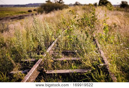 Overgrown with grass old rails the outgoing the horizon.