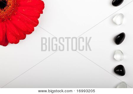 Red Flower Stones Greetingcard