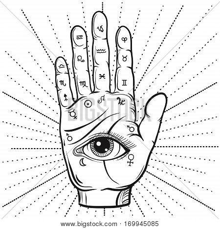 Fortune Teller Hand with Palmistry diagram, hand-drawn all seeing eye. Vector vintage illustration for tattoo template, magic alchemy zodiac symbol.