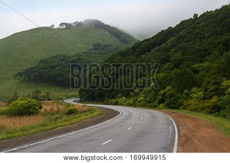 Twisting road. Foggy forest. Foggy road. Misty asphalt road