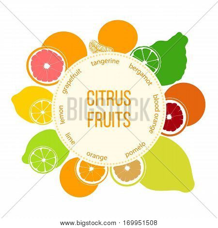 Citrus fruits flat set with round emblem. Bergamot, lemon, grapefruit, lime, mandarin, pomelo, blood orange with slices. For cosmetics, market, health care products. For logo design tag label