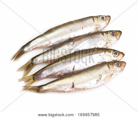 Marinated anchovies isolate on a white background. Studio Photo