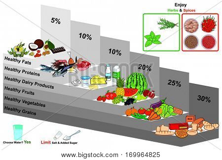 Vector Healthy Food Pyramid infographic chart nutrition balance and with all groups grains vegetables fruits dairy milk products proteins fats water herbs spices diagram  education diet and vegetarian