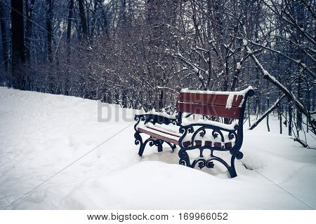 Bench in the park in winter. Snow-covered nature overcast winter day