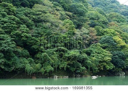 Arashiyama with lake