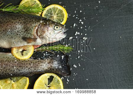 Trout fish on natural slate background with rosemary and lemon