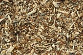 Timber particles and spall over ground as background pattern poster