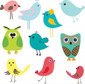 Set of different cute birds. poster