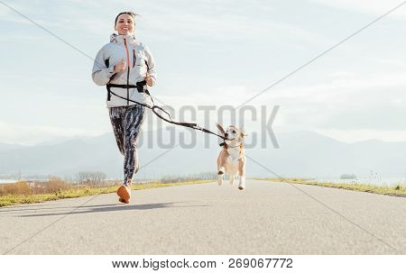 Canicross Exercises. Female Runs With His Beagle Dog And Happy Smiling. Autumn Spring Outdoor Sport
