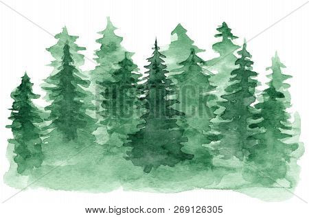 Beautiful Watercolor Background With Green Coniferous Forest. Mysterious Fir Or Pine Trees Illustrat