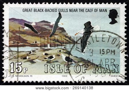 Isle Of Man - Circa 1983: A Stamp Printed In Isle Of Man Shows Great Black-backed Gulls, Larus Marin