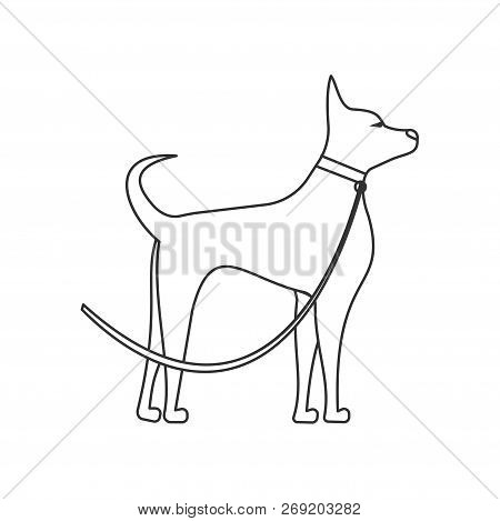 Dog Lead Images Illustrations Vectors Free