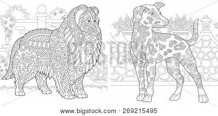 Coloring Pages. Coloring Book For Adults. Colouring Pictures With Rough Collie And Dalmatian Dogs. A