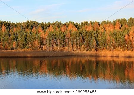 Autumn forest reflected in the lake. Autumn landscape.  Beautiful autumn yellow forest reflected on the water. Yellow autumn trees. Autumn nature. Russian forest. The northern forest. Nature Reserve. The autumn yellow woods. Lake in autumn forest
