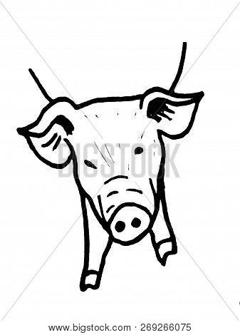 Simbol Of 2019 Year. Pig Head Isolated On White Background. Design Element For Label,emblem, Logo, S