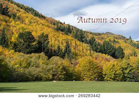 Autumn 2019 Caption Text.  Autumn Foliage On A Hillside Near Arrowtown In New Zealand