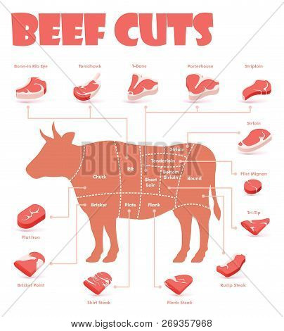 Vector Beef Cuts Chart And Pieces Of Beef, Used For Cooking Steak And Roast - T-bone, Rib Eye, Porte
