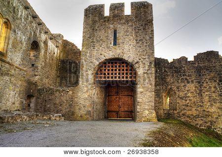 Gate to Adare Castle - Ireland, HDR