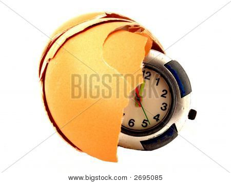 Egg Watch