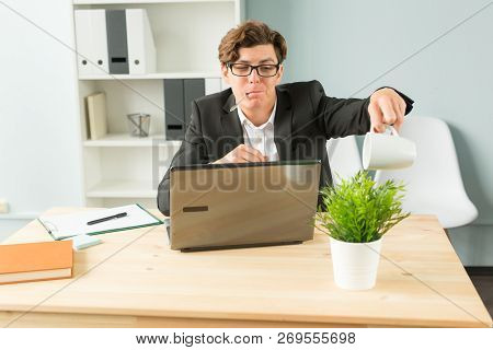 Business People, Humor And People Concept - Handsome Office Man Is Watering The Potted Plant