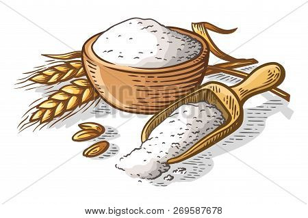 Colorfull Fresh Flour Wooden Dish Scoop On White Background Vector