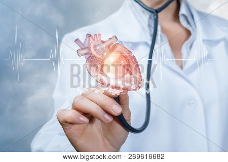 A Doctor Is Touching A Heart Model With Her Stethoscope With The Cardiac Waveform At The Foreground.