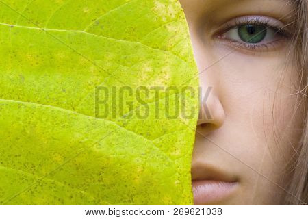 Beauty young blonde woman with green eyes without make up. Teen girl model and big green leaf. Concept of Spa, skin care, wellness, nature organic cosmetic and environmental protection. Copy space.