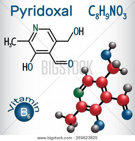 Pyridoxal Molecule, Is A Vitamin B6. Structural Chemical Formula And Molecule Model. Vector Illustra