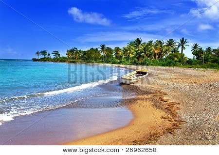 Jamaica. A national boat on sandy coast of a bay