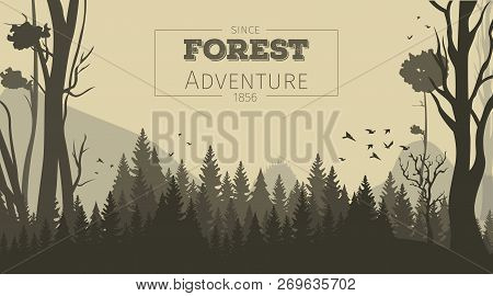 Vector Illustration Cartoon Forest Background. Banner Panorama Silhouette Forest. Trees, Bushes, Gra