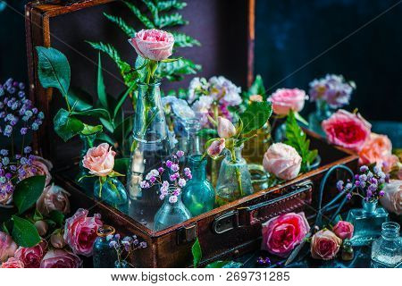 Flower collection in vintage glass jars, vases, and vials in a suitcase. Botany and perfume concept on a dark background with copy space poster