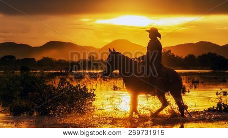 Silhouette The Cowboy Riding On A Mountain With An Yellow Sky; Concept Of Friendly  And Of Summer Va