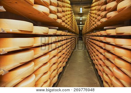 Gruyeres, Switzerland - December 11, 2009: Rows Of Cheese Maturing In A Cellar Of A Cheese Factory I