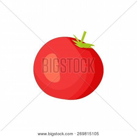 Pickled tomato icon closeup. Agricultural product red vegetable conservation. Healthy nutrient round shaped sour product with seeds isolated on vector poster