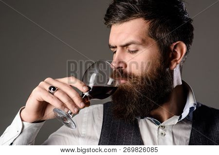 Handsome Man With Beard Drinking Red Wine With Enjoyment. Bearded Man Tasting Glass Of Wine. Man In