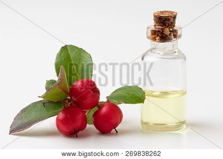 A Bottle Of Essential Oil With Wintergreen Leaves And Berries On A White Background