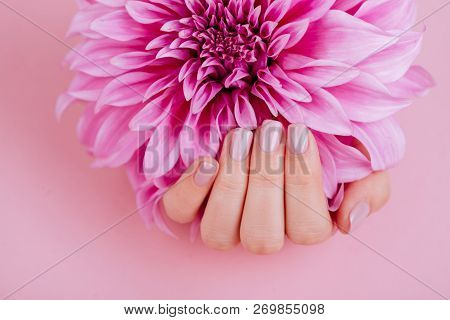 Closeup fingernails with pink fashion manicure, cupped woman beautiful manicured hands holding pink flowers poster