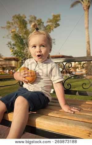 Amazed Child Or Small Little Baby Boy Sitting With Two Oranges On Bench On Sunny Day In Park. Kid Wi