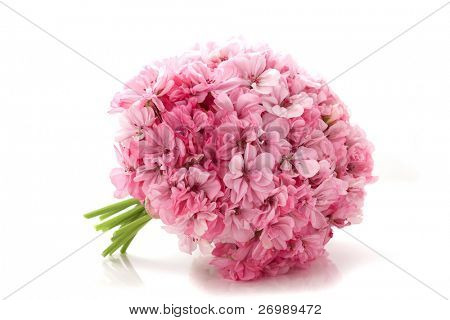 Picture of bouquet of pink flowers on a white background