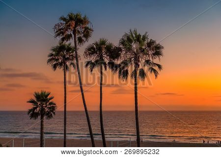 California Beach. Palm Trees At Sunset On Manhattan Beach, Los Angeles, California. Vintage Processe