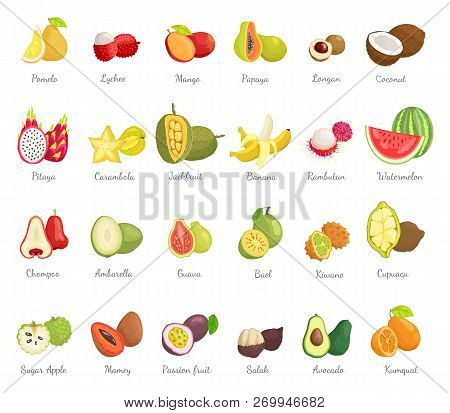 Kiwano Coconut And Banana Set Of Ripe Tropical Fruits. Avocado And Cupuacu, Salak And Kumquat, Lyche