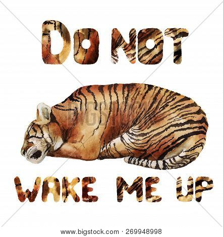 Watercolor Image Of Sleeping Tiger On White Background With Text Do Not Wake Me Up