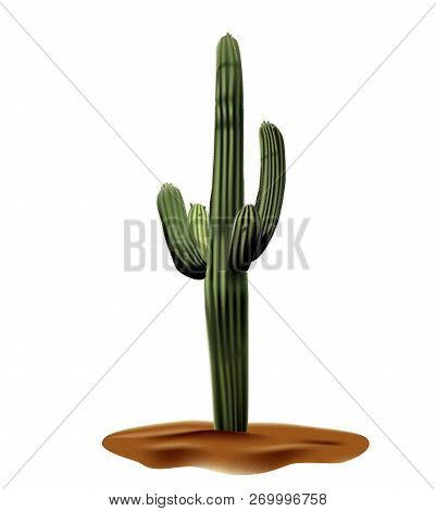 Super Realistic Desert Cactus Carnegia Giant. Plant Of Desert Among Textured Gradient Sand. Realisti