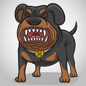 Cartoon angry dog of breed a Rottweiler. poster
